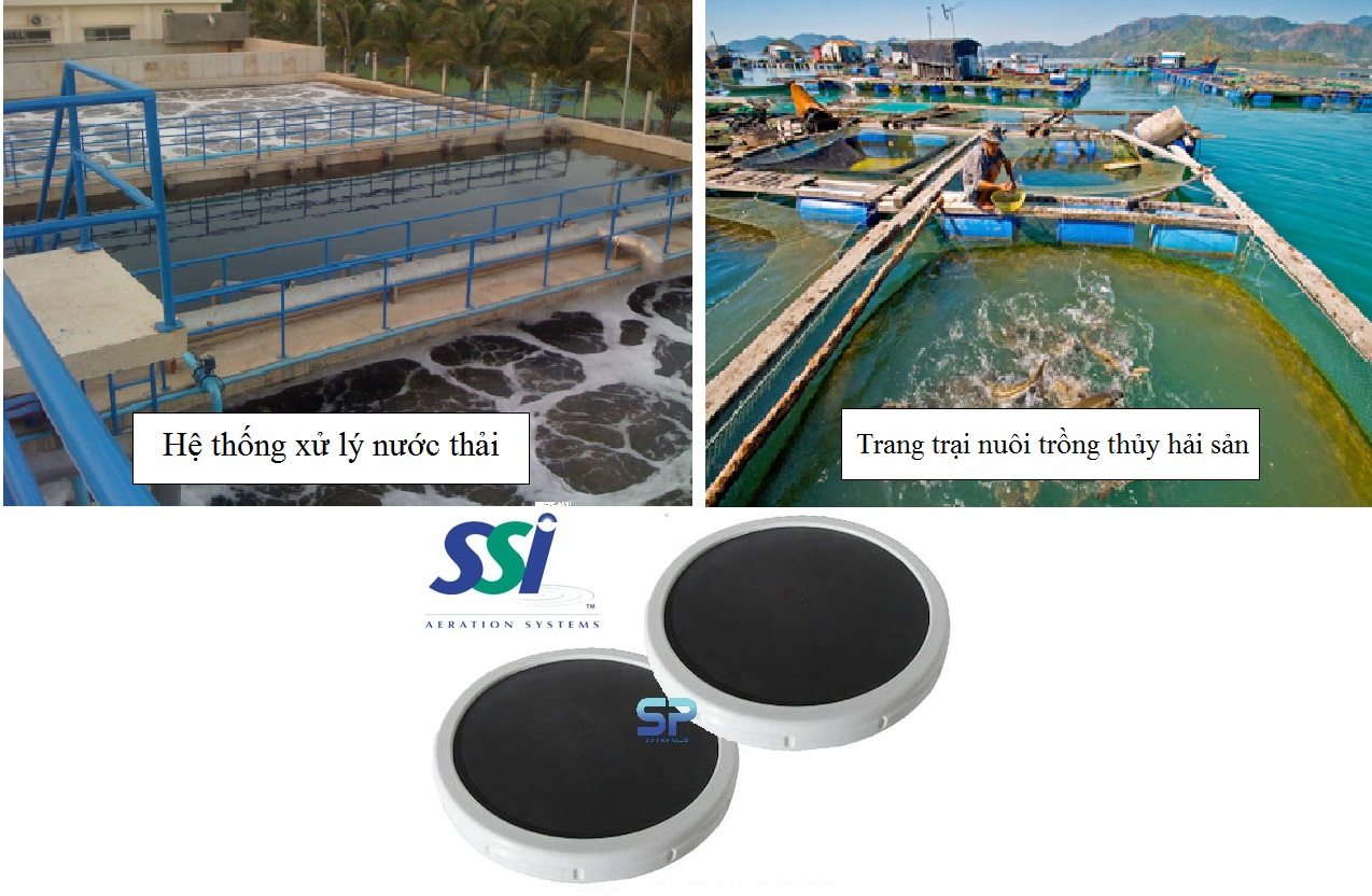 Tổng quan về đĩa phân phối khí tinh SSI